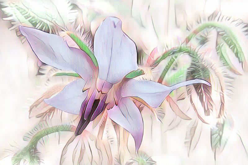 Kwiatowe wzory we wnetrzach